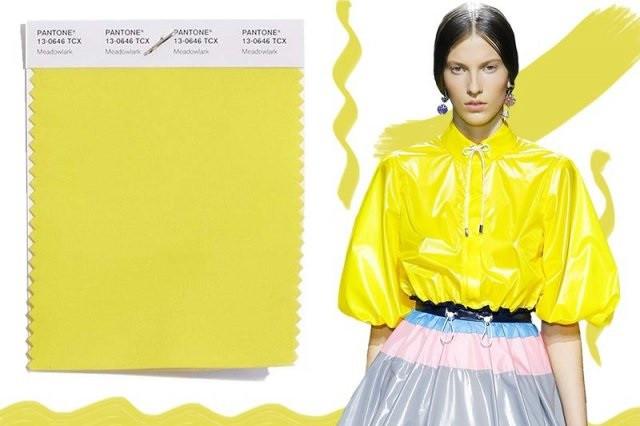 Модные цветовые решения в одежде 2019